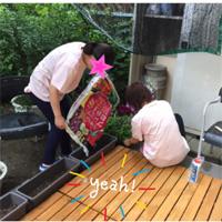 ぐぅぐぅお花畑作り〜